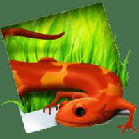 SimplyIcon 1.1 نرم افزار تبدیل تصاویر به آیکون