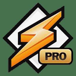 Winamp Pro 5.666 پخش موسیقی