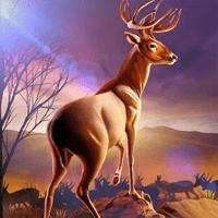 Hunt 3D 2.1 بازی سرگرم کننده برای اندروید