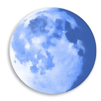 Pale Moon 25.0.0 نرم افزار مرورگر سریع و قدرتمند