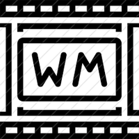 WM Recorder 15.2.0.0 نرم افزار دانلود و ضبط ویدئو های آنلاین