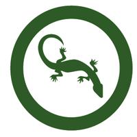 LoadScout 3.0 نرم افزار استخراج محتویات فایل های فشرده بدون نیاز به دانلود کل فایل
