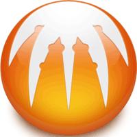 BitComet 1.56 نرم افزار به اشتراک گذاری فایل ها