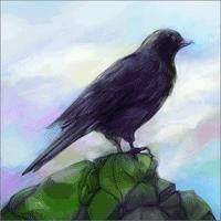 Gathering Sky 1.0 بازی شگفت آور پرندگان آسمان برای موبایل