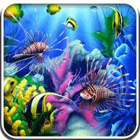 Aquarium 3D Live Wallpaper 1.7.0 لایو والپیپر آکواریوم برای اندروید