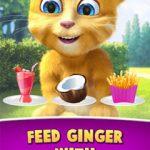 Ginger's Birthday