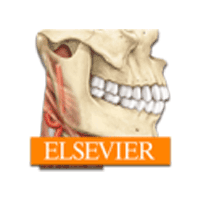 Sobotta Anatomy Atlas 2.9.4 برنامه آناتومی بدن انسان برای موبایل