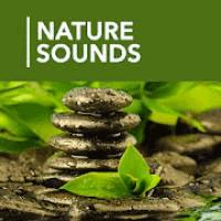 A 1000 Nature Sleep Relax Sounds 1.4.6 کالکشن صدا آرام بخش برای موبایل
