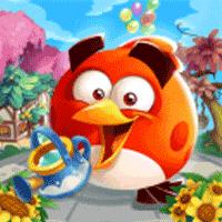 Angry Birds Blast Island 1.0.9 بازی موبایلی انفجار در جزیره پرندگان خشمگین