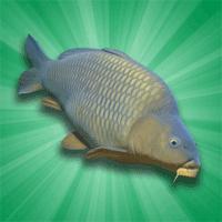 Carp Fishing Simulator 1.9.8.3 بازی شبیه ساز ماهیگیری برای موبایل