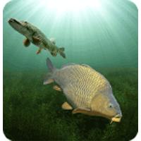 3DCARP 10.6 بازی شبیه سازی ماهیگیری برای اندروید