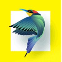 Bird Identifier 1.1 برنامه شناسایی پرندگان برای اندروید